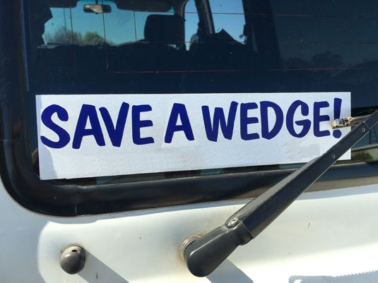 save-a-wedge